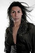 Trans Escort Como Giovanna Lucarelli 334.7268865. foto 6