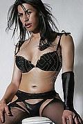 Trans Escort Como Giovanna Lucarelli 334.7268865. foto 2