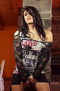 Trans Escort Como Giovanna Lucarelli 334.7268865. foto 11