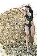 Trans Escort Milano Stefany Cruz 329.9349752 foto 5