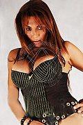 Trans Escort Siena Eva 393.3559784 foto 1