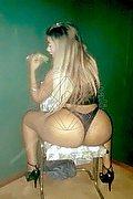Trans Escort Rio De Janeiro Grazi Pot�ssio 0055.21980475619 foto 2