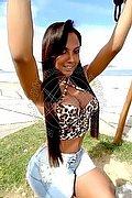 Trans Escort Rio De Janeiro Aninha Smith 0055.21972572450 foto 9