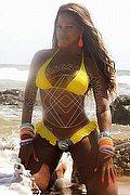 Trans Escort Salvador Bahia Stella lima 0055.71992993320 foto 10
