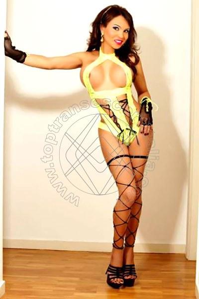 Catalina IBIZA 0034664511495