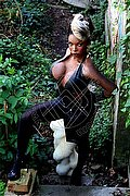 Trans Escort Mannheim Naomi Black Hammer Pornostar 0049.15775601968 foto 10