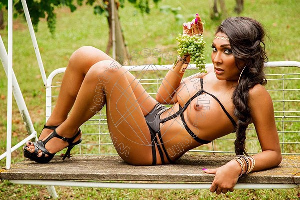 Foto 39 di Thalita Top Xxxl transescort Parma