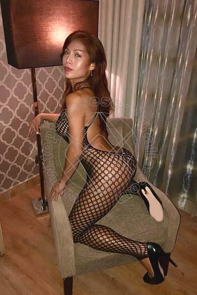 Foto 188 di Liisa Ladyboy Asiatica transescort Sanremo