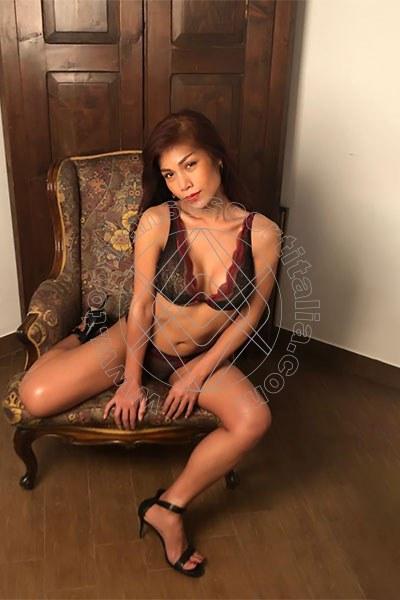 Foto 126 di Liisa Ladyboy Asiatica transescort Sanremo